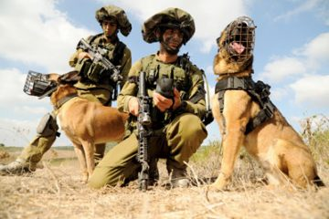 Check Out These 4-Legged Heroes Of The IDF! Move Over Scooby Doo!